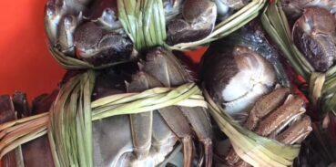 大闸蟹死了多久不能吃?