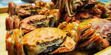 清蒸大闸蟹是冷水下锅还是热水下锅?