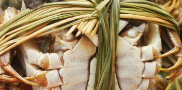固城湖大闸蟹是发物吗?螃蟹属于发物吗?
