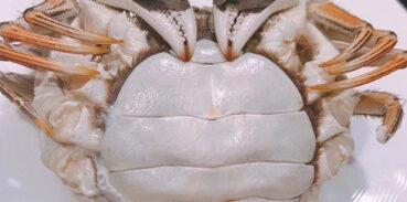 什么是即食大闸蟹?即食大闸蟹口感怎么样?