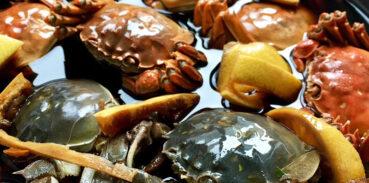 为大闸蟹能不能生吃?生吃大闸蟹有什么危害?