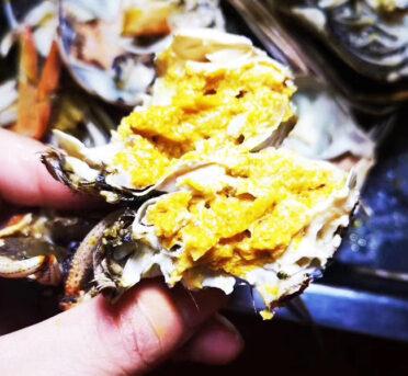野生大闸蟹比养殖大闸蟹更加干净好吃?