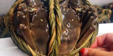 便秘的人能吃大闸蟹吗?