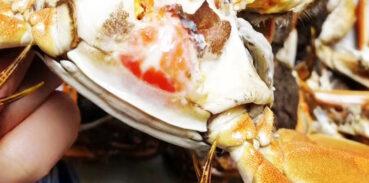女人吃大闸蟹有什么好处?适当吃有抗衰老的功效