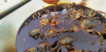 大闸蟹几两重的好吃?