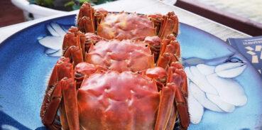 大闸蟹煮熟后蟹壳为什么会变色?