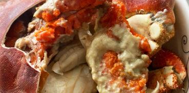 珍宝蟹和面包蟹有什么区别